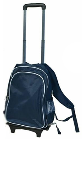 Navy blue trolley with removable bag